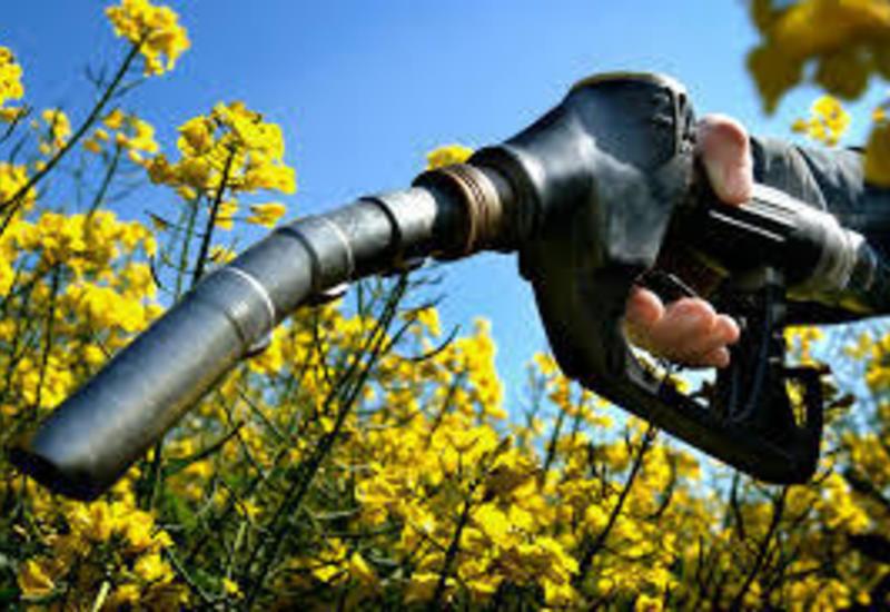 Азербайджан начинает производство нового топлива