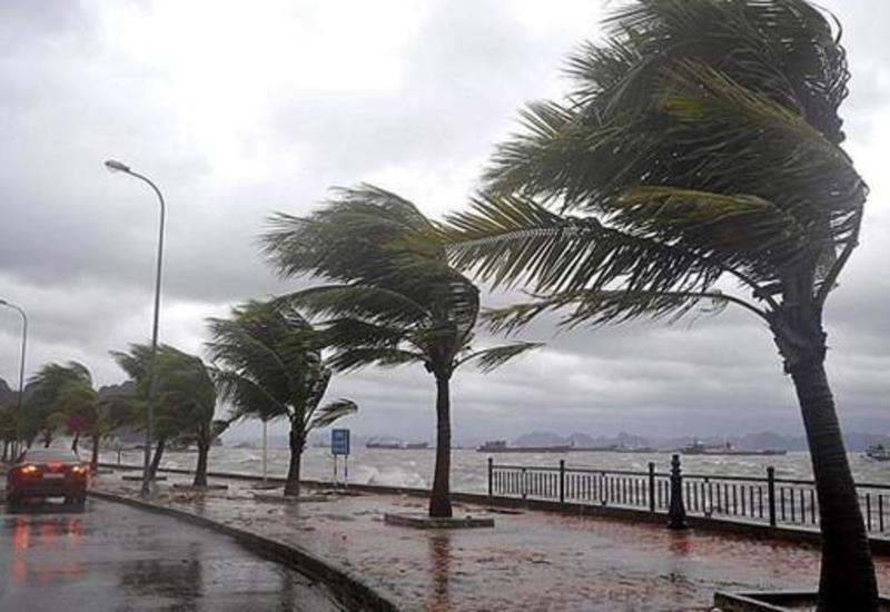 В турецких школах отменили занятия из-за урагана