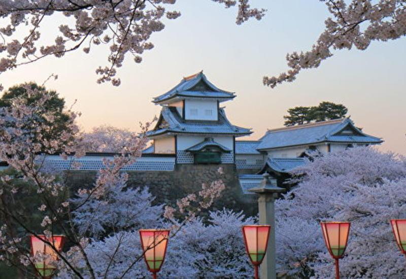 Где и когда искать самые красивые виды в Японии