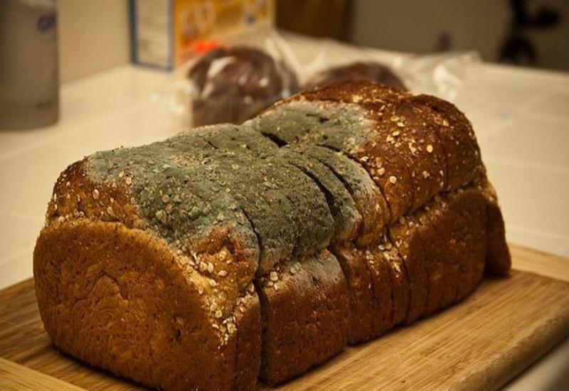 Вот почему нельзя есть хлеб, который начал цвести