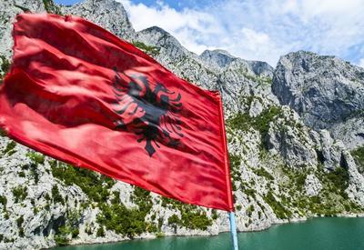 Протестующие атаковали канцелярию премьера Албании