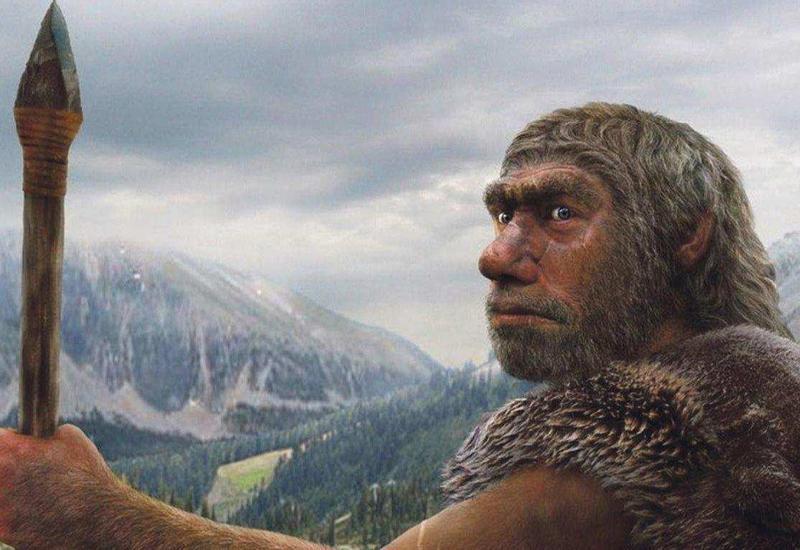 Стало известно, чем питались неандертальцы