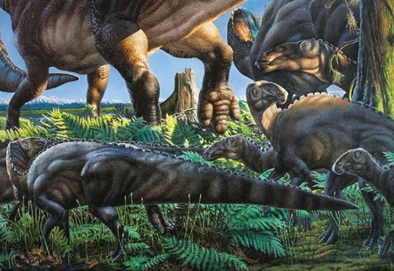 """На Аляске найдено """"темное"""" существо возрастом 69 млн лет"""