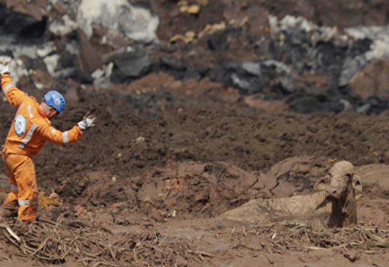 Число погибших из-за прорыва дамбы в Бразилии превысило 170 человек