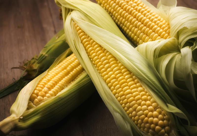 Полезна ли кукуруза: 6 преимуществ, о которых все должны знать