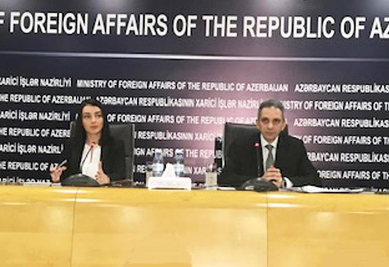 Лейла Абдуллаева об очередной встрече глав МИД Азербайджана и Армении