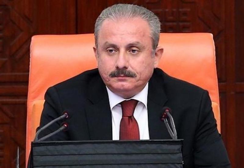 Спикер парламента: Проблемы Азербайджана - это проблемы Турции