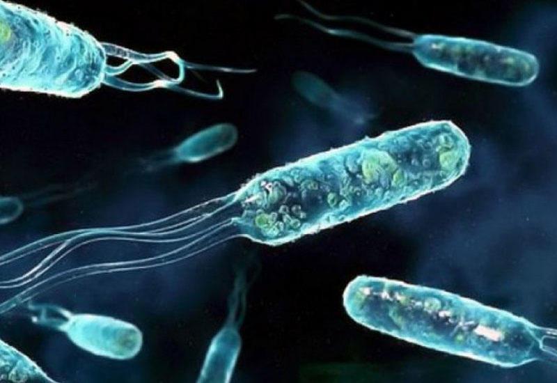 Ekspertlər dayanıqlı bakteriyalarla bağlı vəziyyətin pisləşməsini təsdiqləyirlər