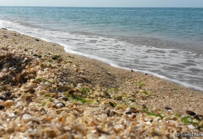 Как воздействовали климатические изменения на Абшеронский полуостров?