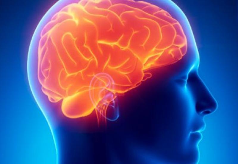 """Ученые обнаружили, что мозг человека способен на нечто невероятное <span class=""""color_red"""">- ВИДЕО</span>"""