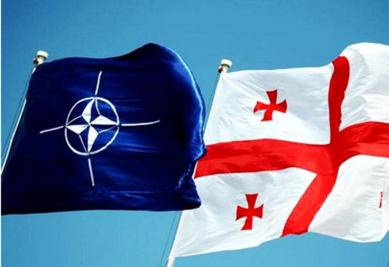 НАТО расширит сотрудничество с Грузией