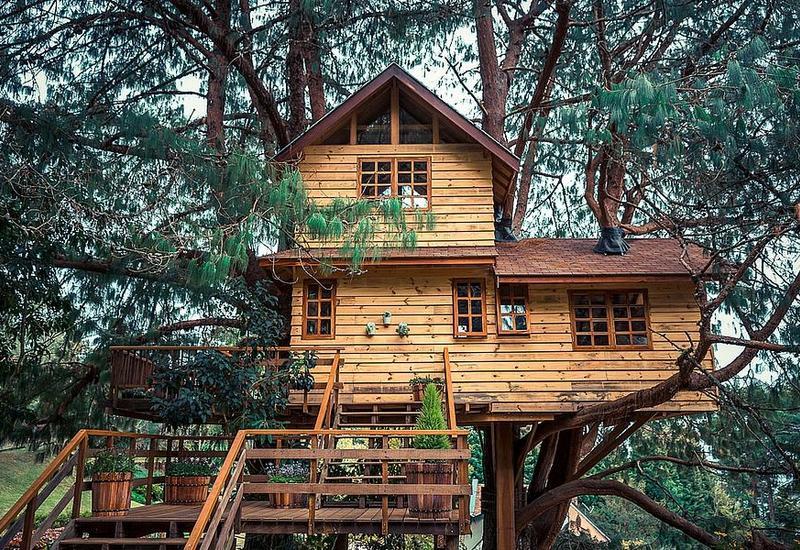 В Москве снесли отель на дереве