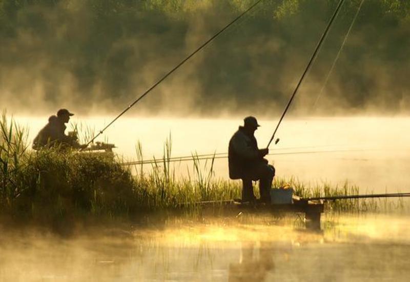 """Американские рыбаки поймали 340-килограммовую меч-рыбу <span class=""""color_red"""">- ВИДЕО</span>"""