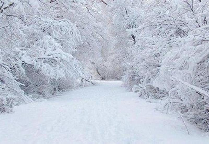 В Исмаиллы идет снег