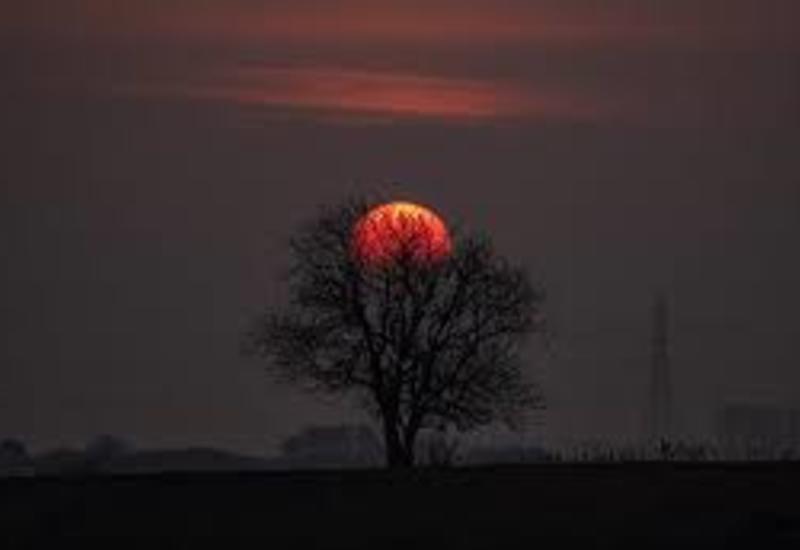 """Розовая Луна взошла над Землей: завораживающие кадры <span class=""""color_red"""">- ВИДЕО</span>"""