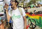 Очередной позор - в Армении отпраздновали всемирный день марихуаны