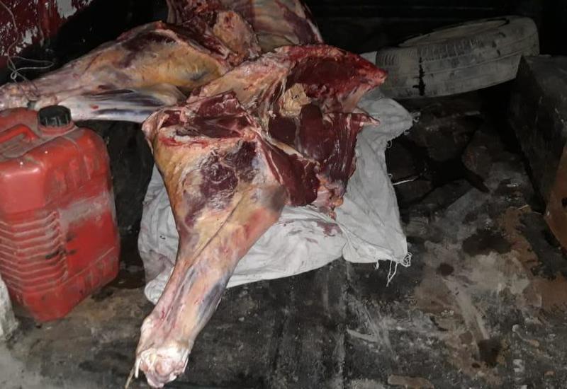 "В Азербайджане обнаружили десятки кг опасного мяса <span class=""color_red"">- ФОТО</span>"