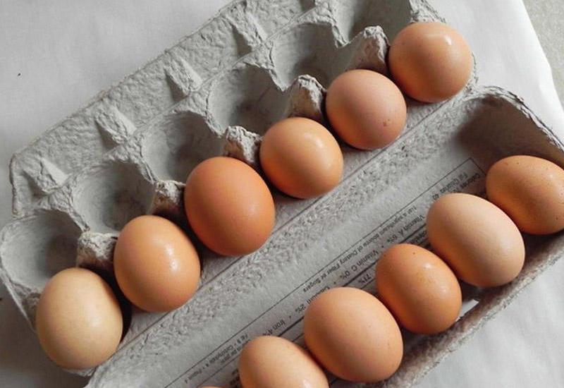 Azərbaycan ərəb ölkəsinə yumurta ixracına başlayıb