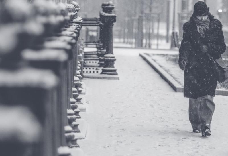 На Петербург обрушился мощный снегопад