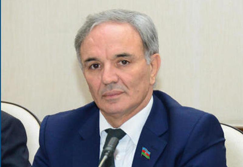 Афлатун Амашов: Решение в связи с парламентом вызвано адекватной реакцией на реформы Президента Ильхама Алиева