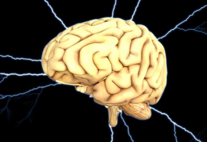 Названы главные тайны человеческого мозга