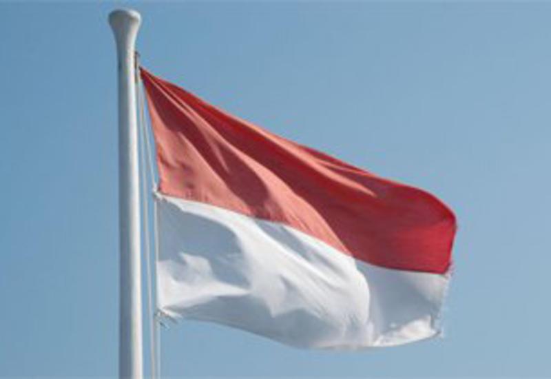 Основные причины смерти членов избиркомов в Индонезии