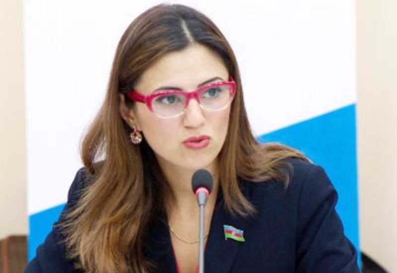 Севиндж Фаталиева: Пашинян далек от реальной политики