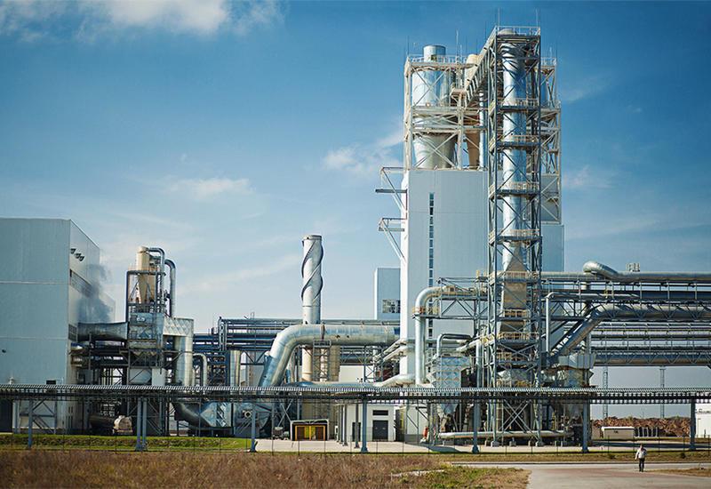 В этих районах Азербайджана построят семеноперерабатывающие заводы