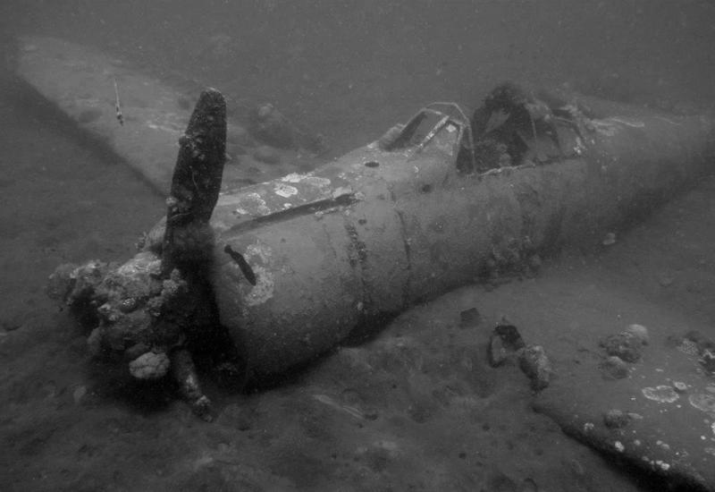 Почему Черное море превращается в «Мертвое»?