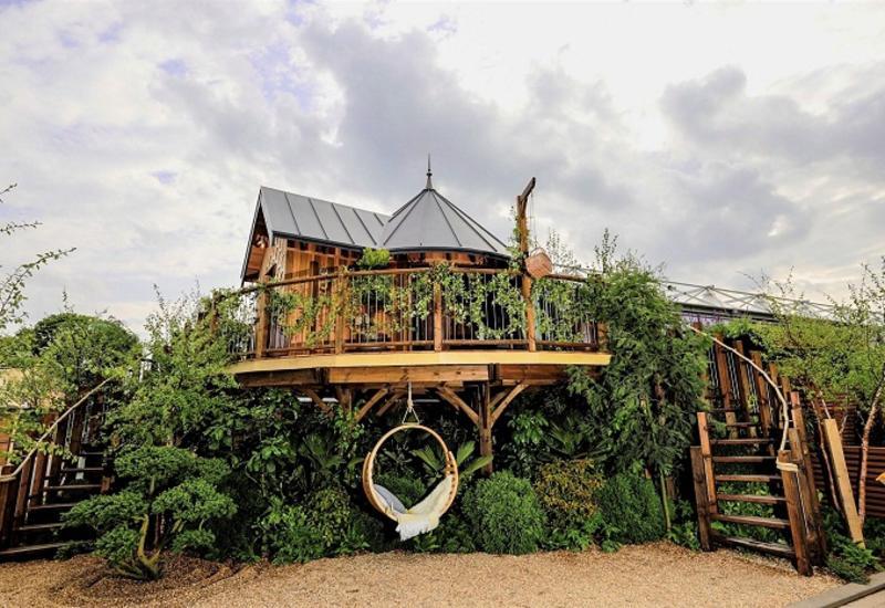 Почему домик на дереве стал самым обсуждаемым объектом на выставке цветов в Англии