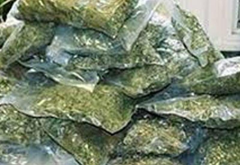 Balakəndə külli miqdarda narkotik vasitə aşkarlanıb