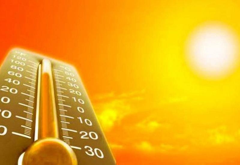Экстремальная жара в Индии: погибли десятки человек