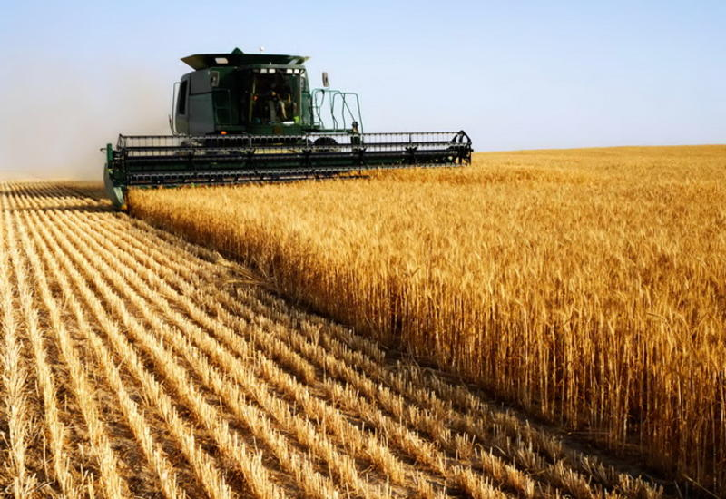 Азербайджан вводит новшество в сельском хозяйстве