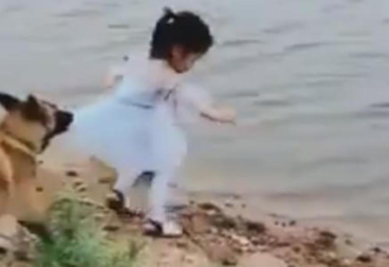 Четвероногая защитница не позволила своей маленькой хозяйке свалиться в реку