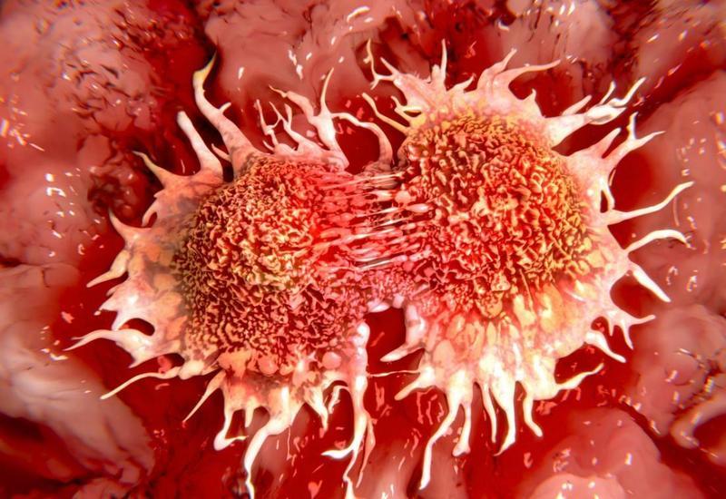 Ученые: Витамин С подпитывает раковые клетки