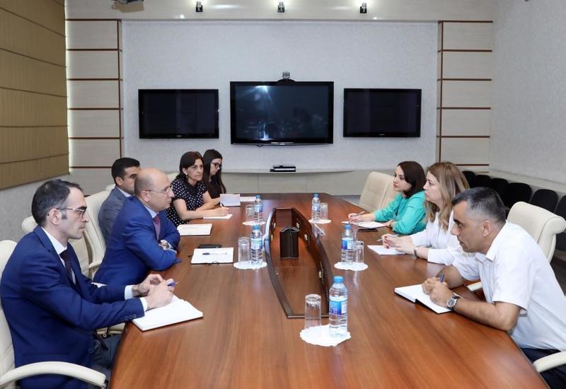 В Азербайджане сотням лиц с инвалидностью помогут наладить бизнес