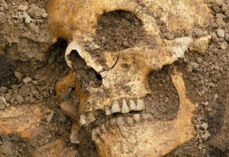 В Швеции найдены подземные корабли со скелетами на борту