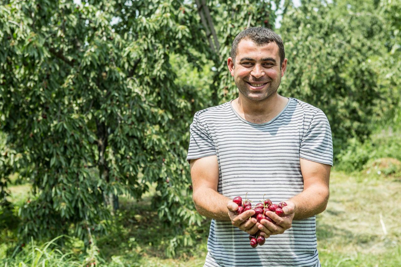 В маркетах Нигерии продается азербайджанская черешня