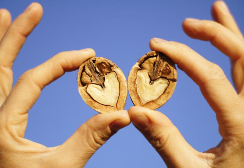 Чтобудет скровью, если есть грецкие орехи ежедневно