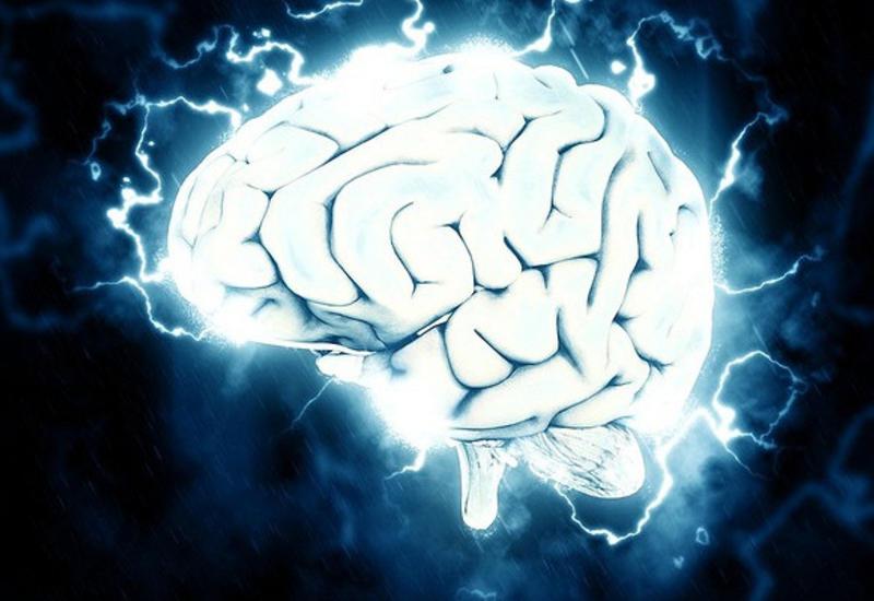 Ученые научились возвращать к жизни мертвый мозг