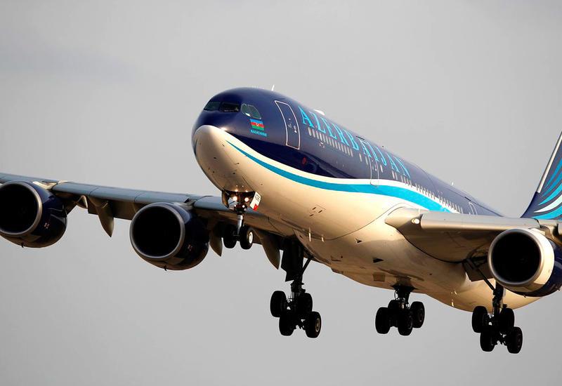 Самолет AZAL столкнулся с птицей