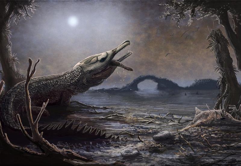 Бразильский школьник нашел останки доисторического крокодила