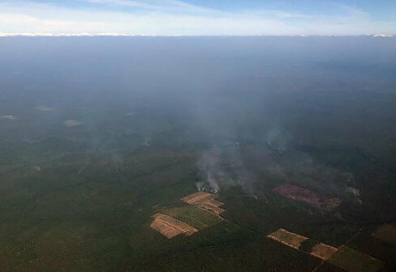 Италия предложила России помощь в тушении пожаров в Сибири
