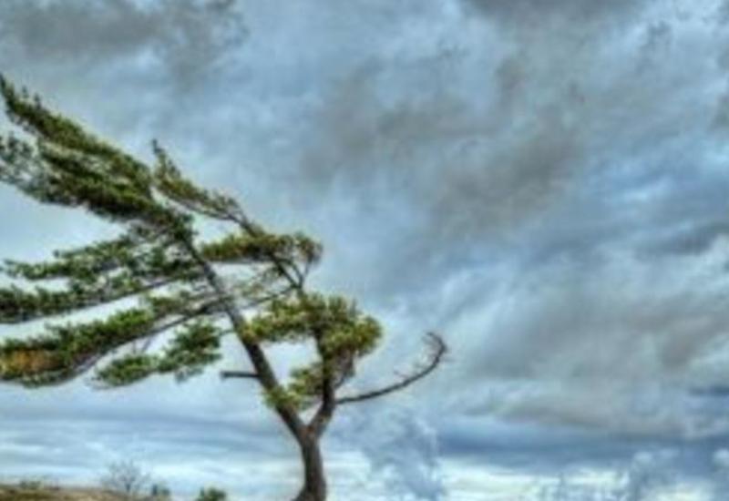 Скорость ветра в Баку достигла 20 м/с