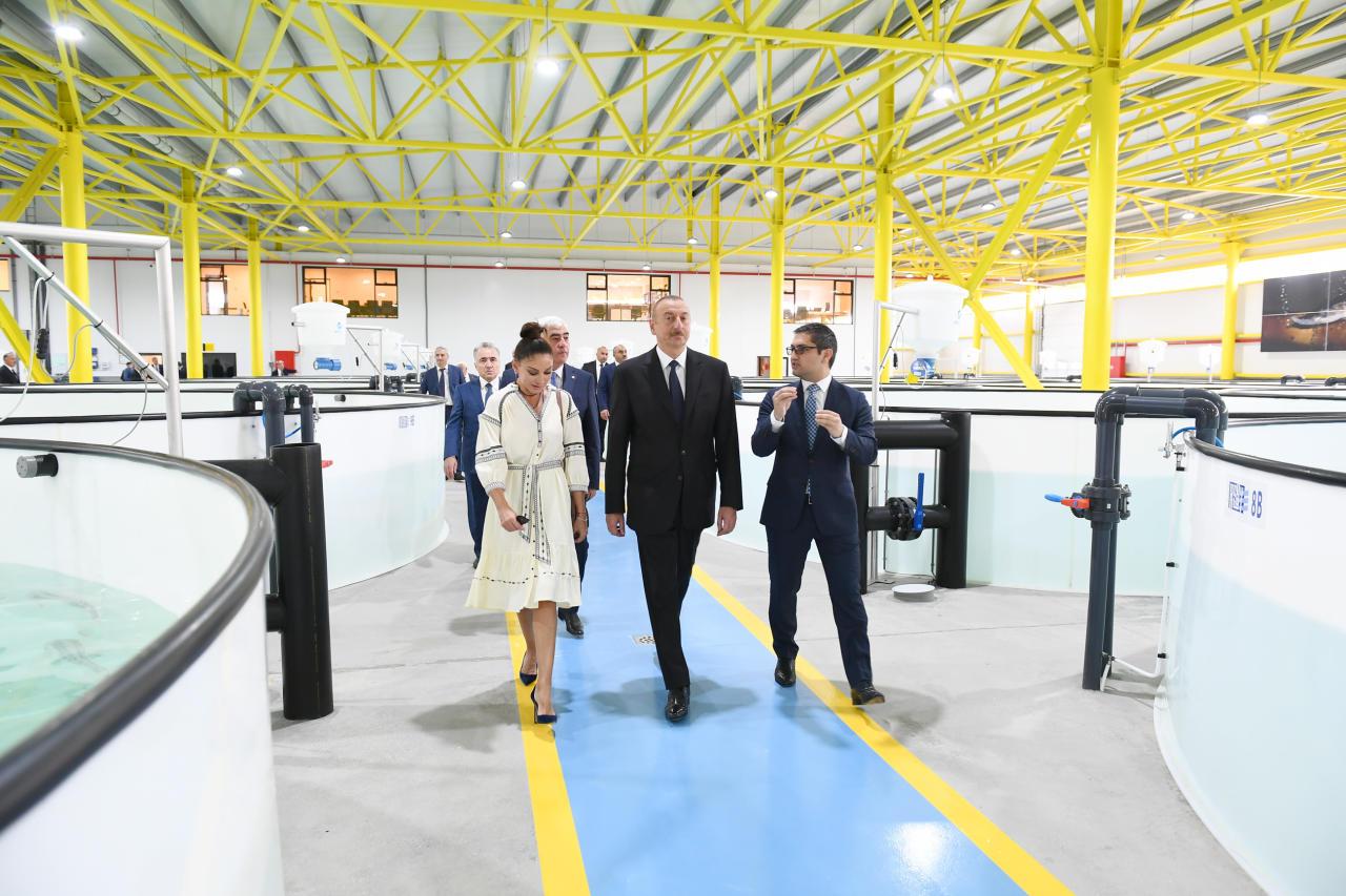 Президент Ильхам Алиев и Первая леди Мехрибан Алиева ознакомились с производственным процессом на рыборазводном заводе «НереМИЗ», созданном в Пираллахинском районе