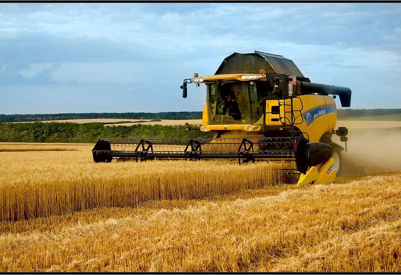 Фермеры в Азербайджане получат десятки миллионов субсидий