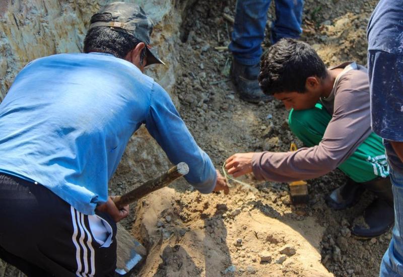 Бразилец вслед за сыном нашел еще больше останков древней рептилии