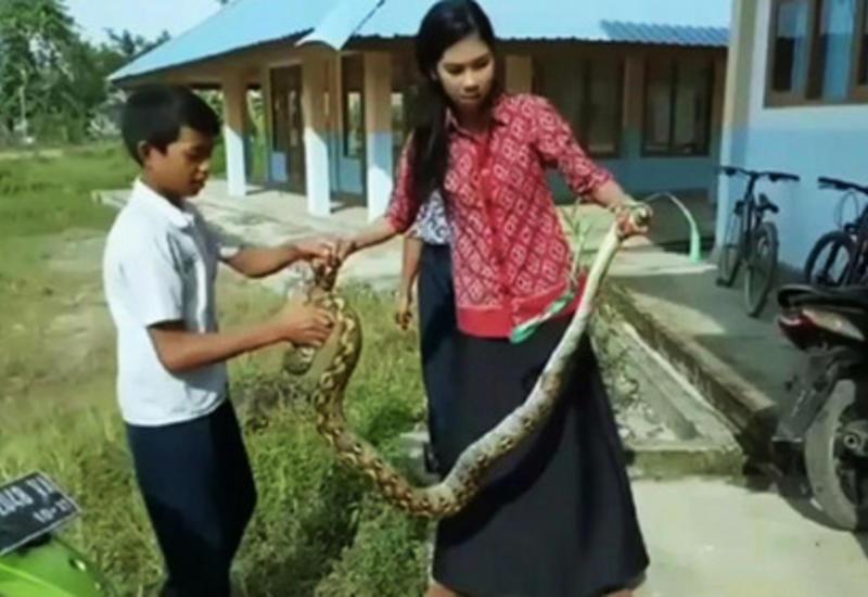 В Индонезии учительница голыми руками поборола питона и спасла детей