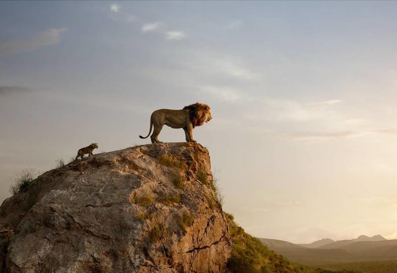 """Нового """"Короля Льва"""" назвали самым кассовым мультфильмом: в Disney не согласны"""
