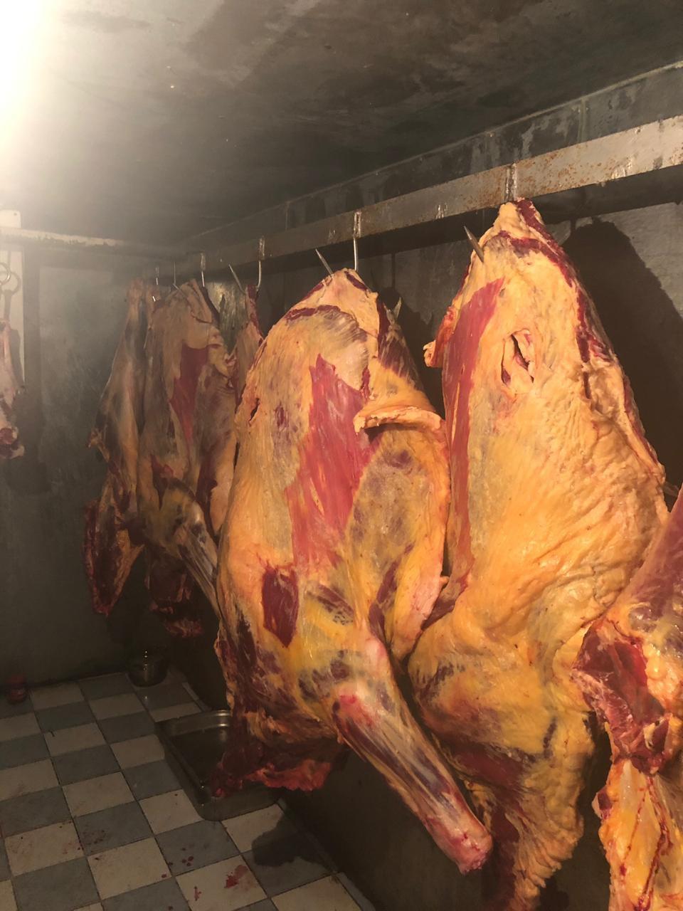 В Баку предотвращена реализация 851 кг непригодного к употреблению мяса
